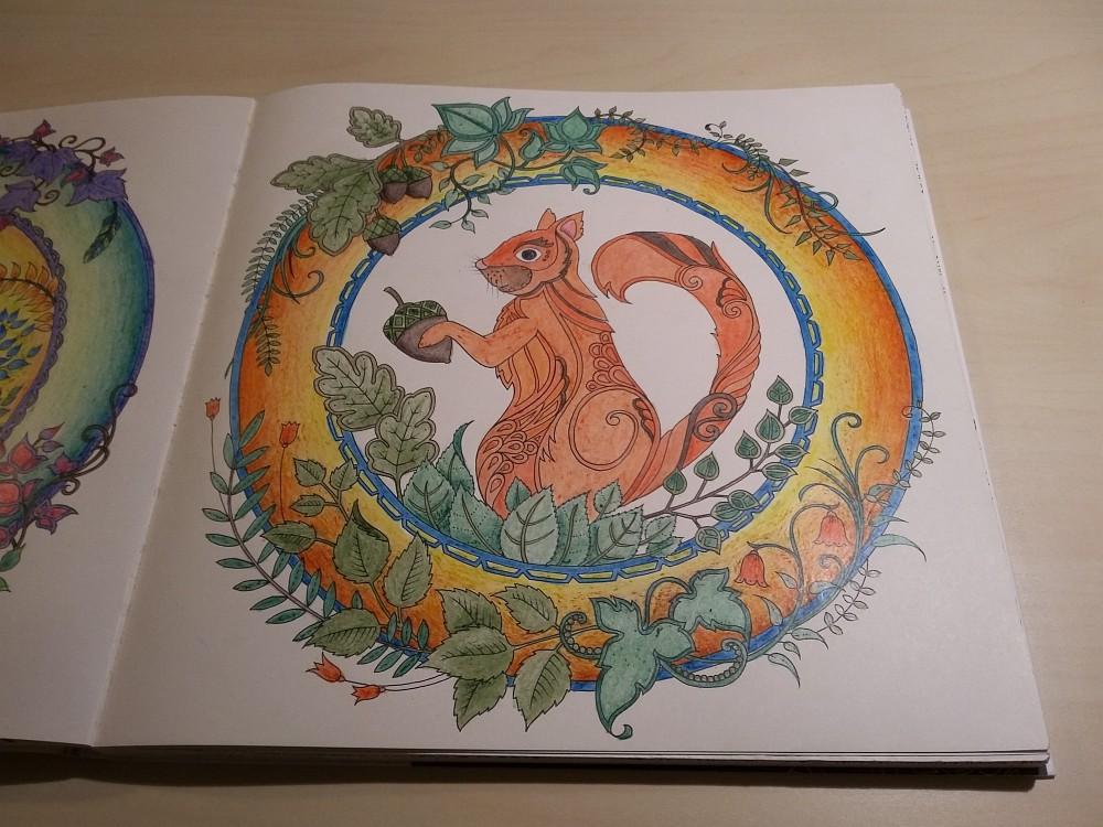 Ausmalbuch bemalte Seite Eichhörnchen