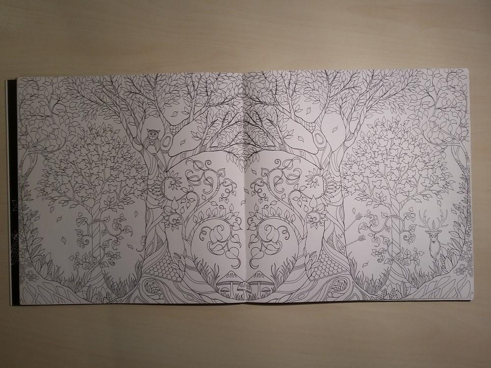 Ausmalbuch unbemalte Seite mit Wald